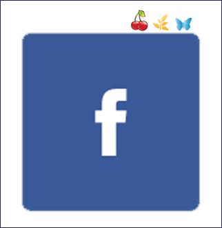 puls_facebook