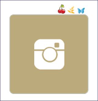 puls_instagram