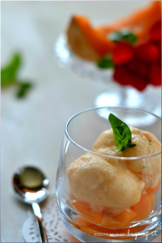 sorbetto di melone e basilico2 (2)